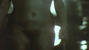 El Sexo Esta Loco (1981)